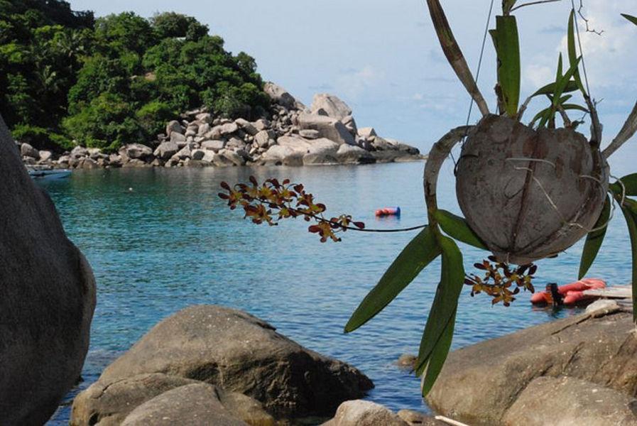 Солнечный отдых на Симиланских Островах в Таиланде