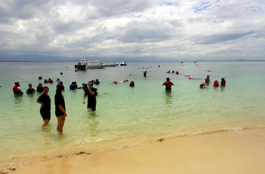 Люблю остров Борнео