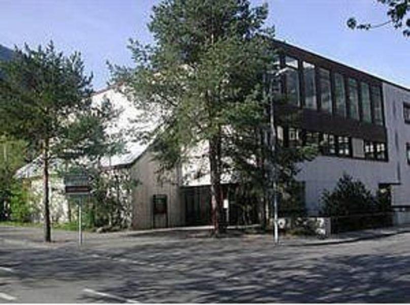 Музей естественной истории, Кур