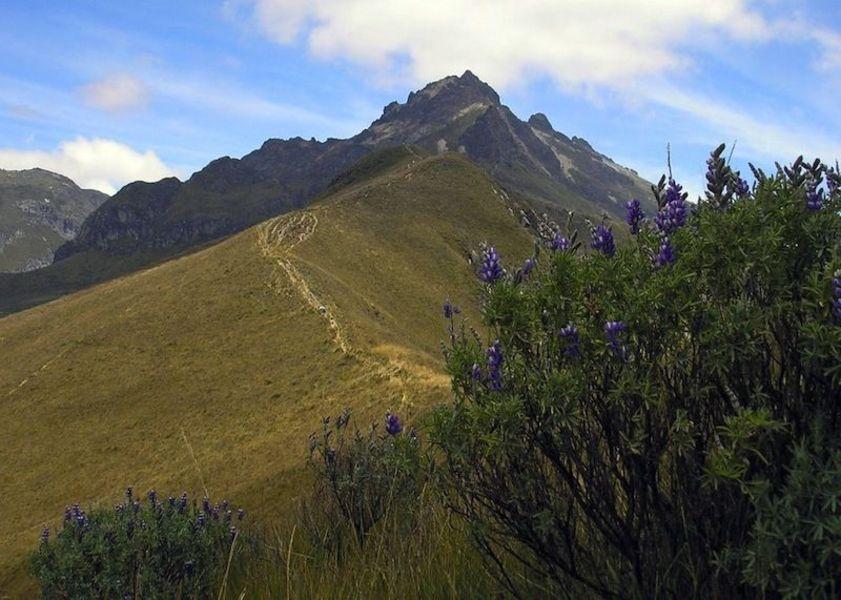 Двуглавая гора Пичинча