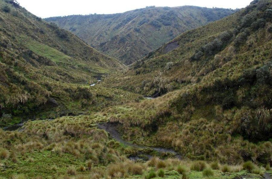 Национальный парк Сангай