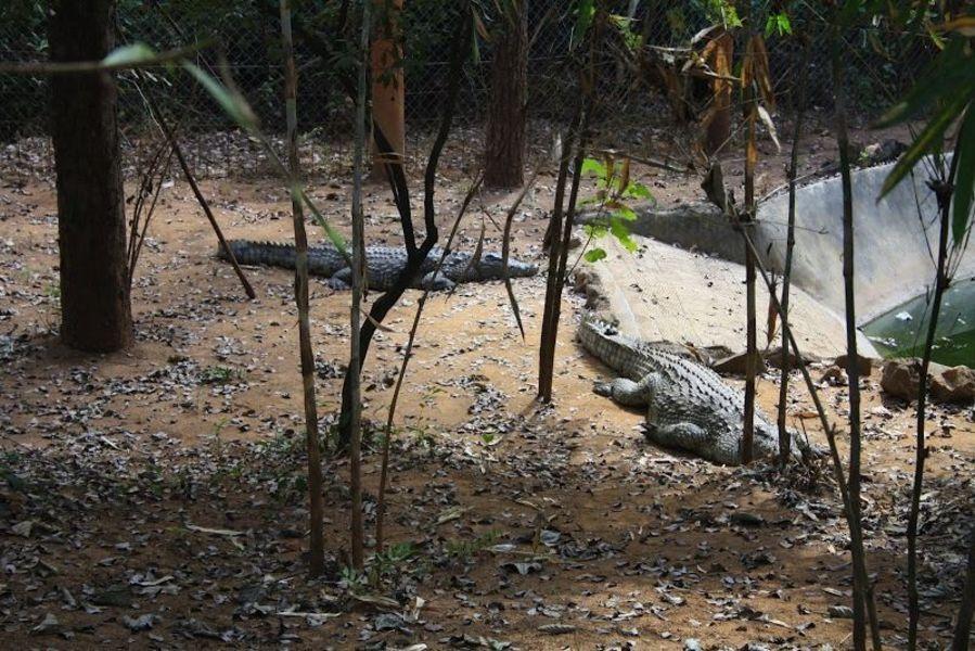 Природный заповедник Лилонгве
