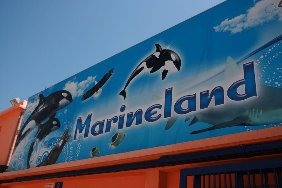 Посещение Маринленд