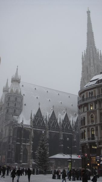 Вечер в Вене