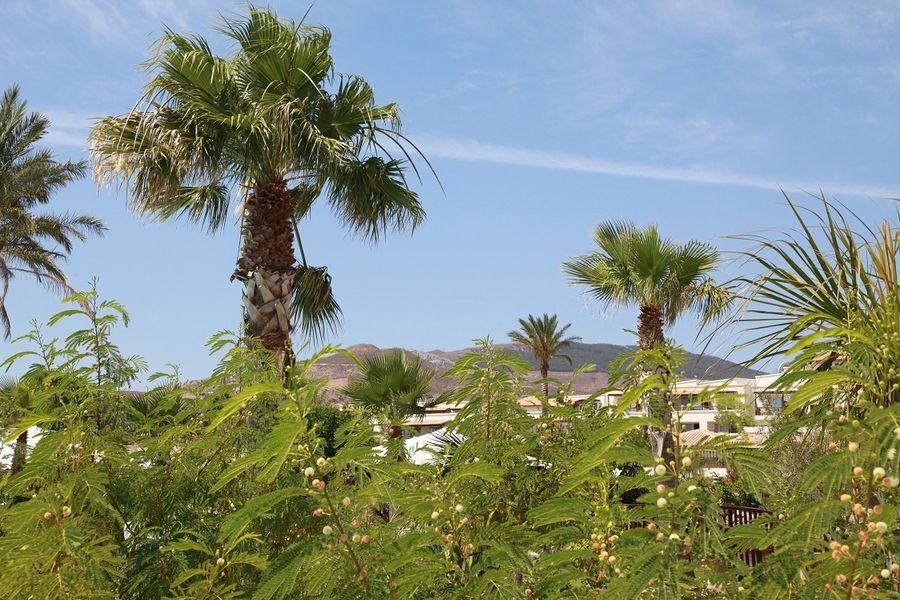 Отдых на острове Кос