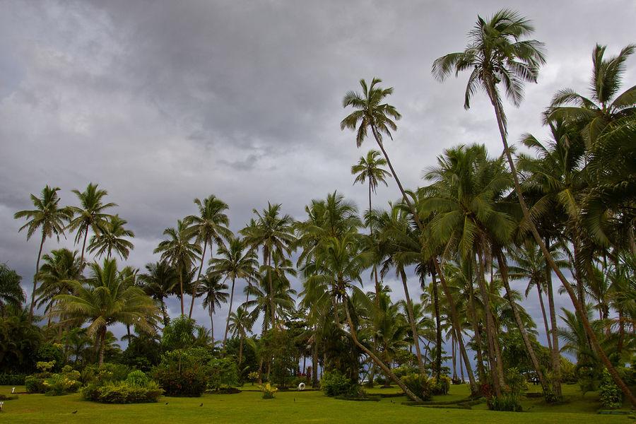 Фиджи