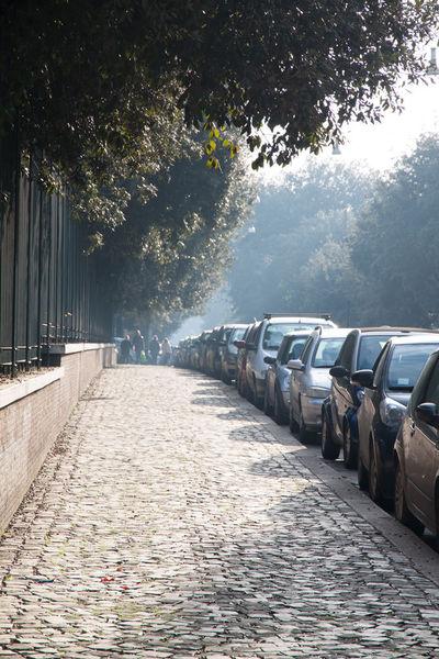 Рим, Вокруг Палатинского холма