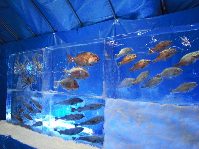 Ледяной аквариум Кори но Суизокукан