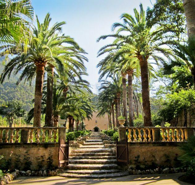 Сады Альфабия