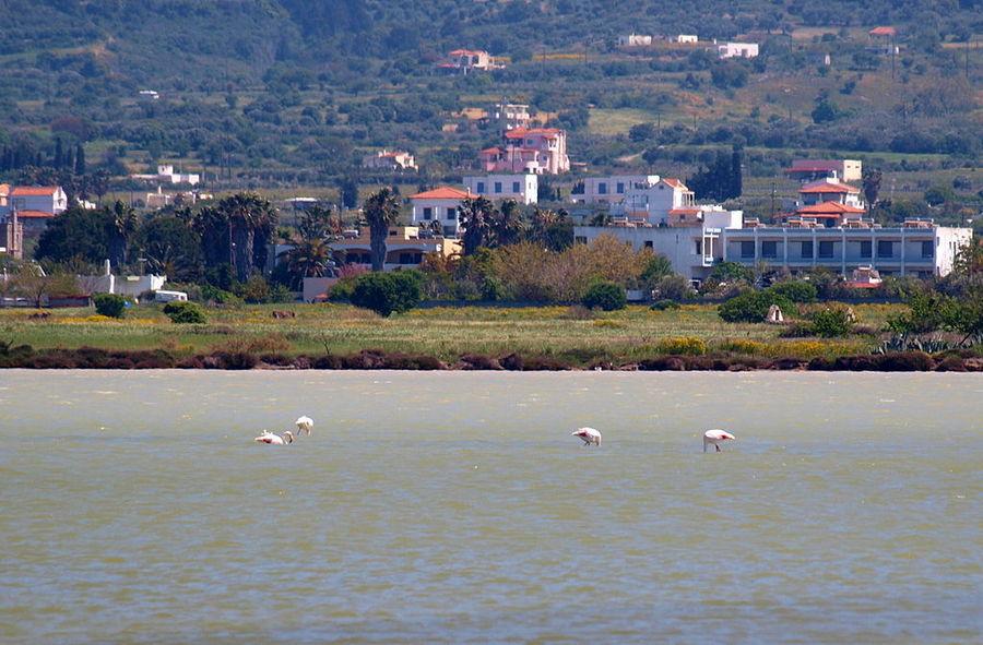 Соленое озеро Аликес