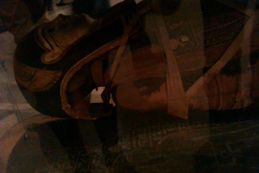 Государственный Музей Изобразительных Искусств имени А.С Пушкина в Москве