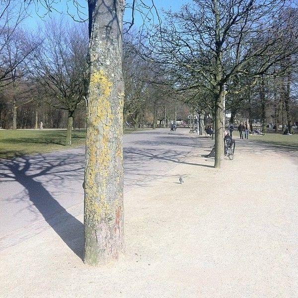 Голландия, Бельгия, Германия в марте