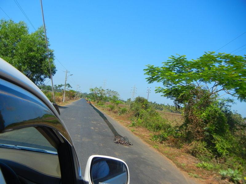 Путешествие на Гоа