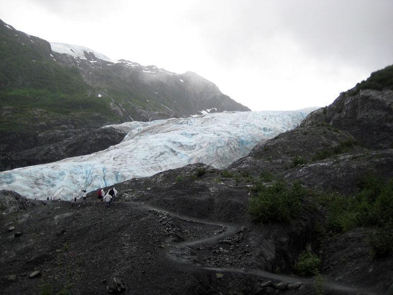 Ледник Экзит