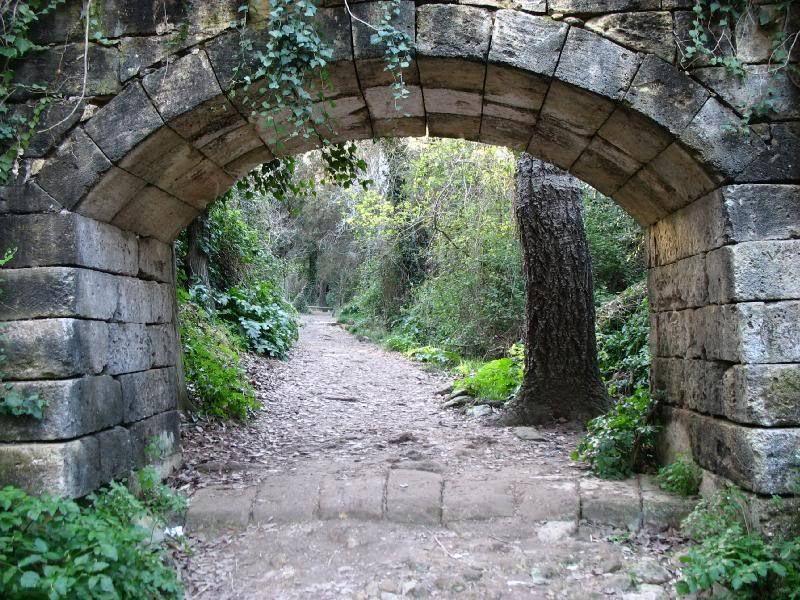 Сады Бускет