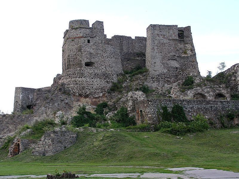 Замок Левице