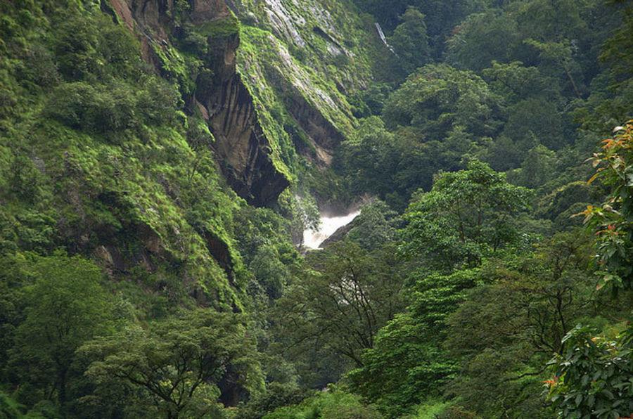 Национальный парк Лангтанг