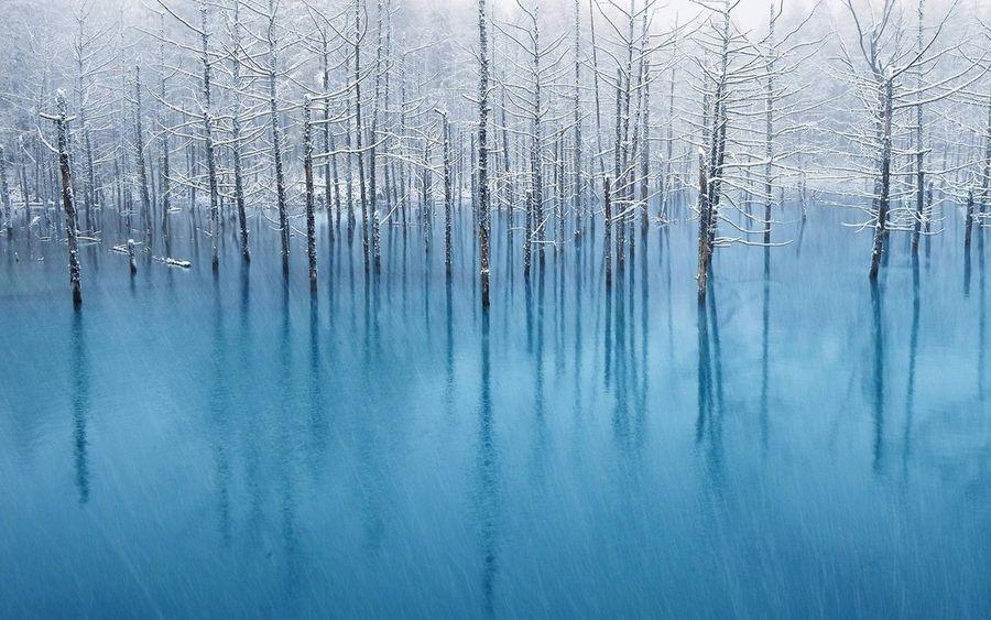 Синий пруд