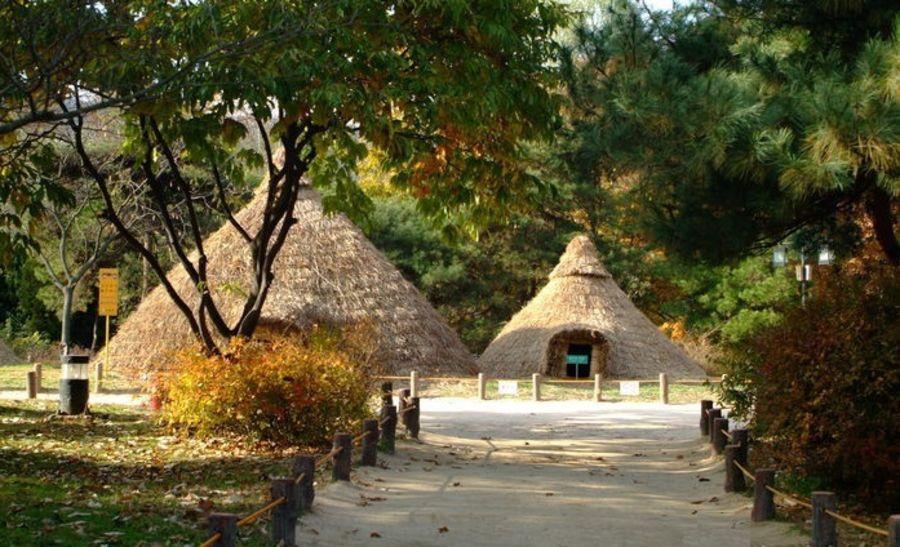 Музей доисторических экспонатов Амса-дон