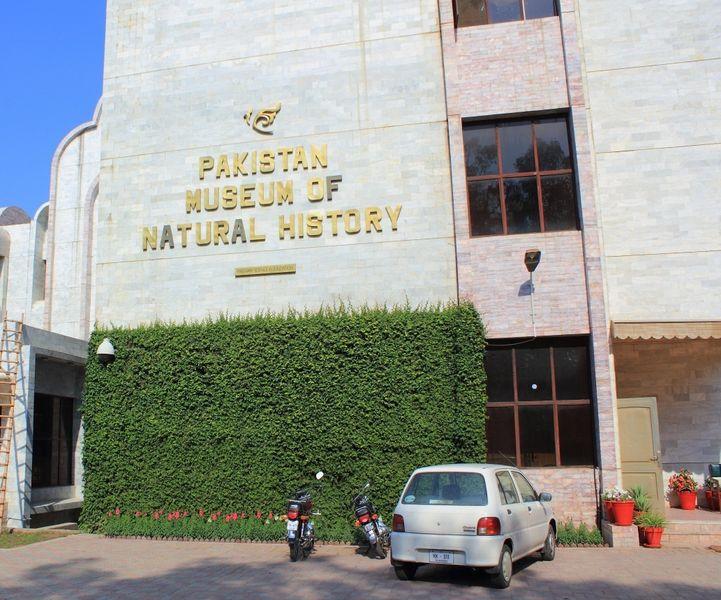 Пакистанский Музей естествознания