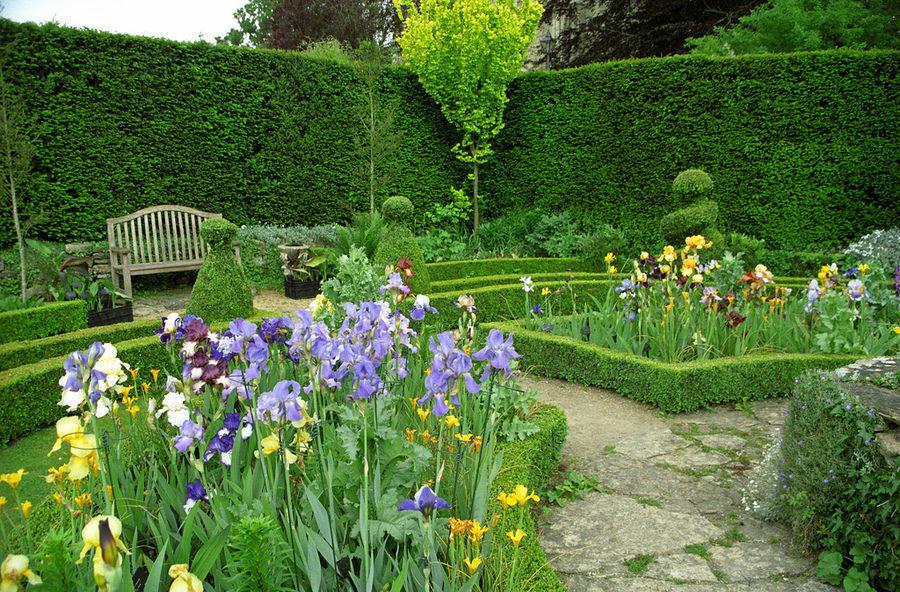 Сады Аббатства Мальмсбери