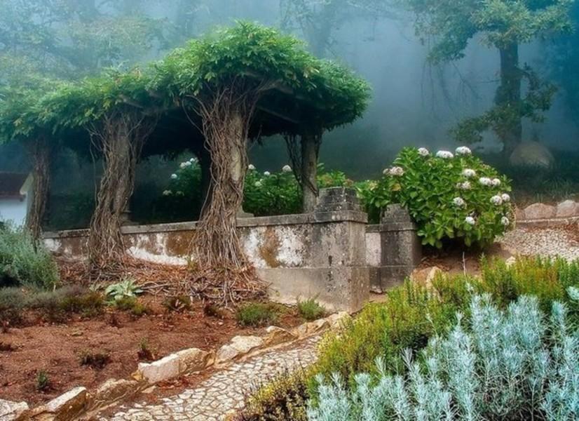 Парк Кинта-да-Регалейра
