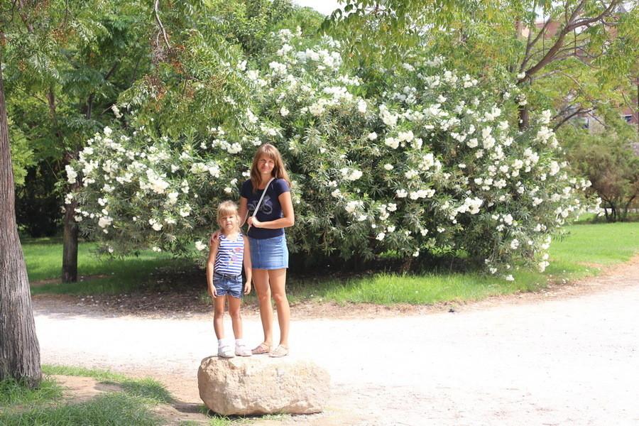 Валенсийский сад Турия