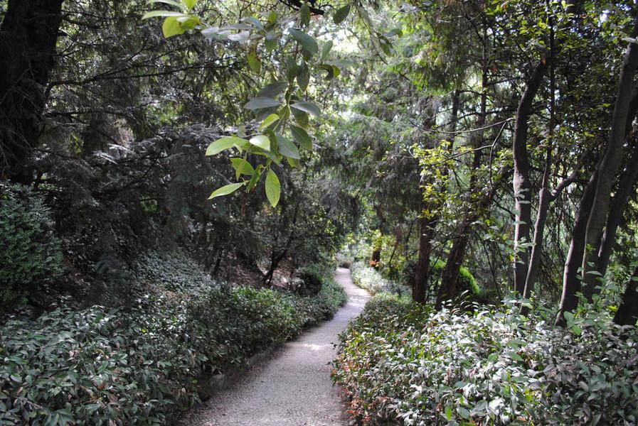 Сад Джусти у окраины Вероны