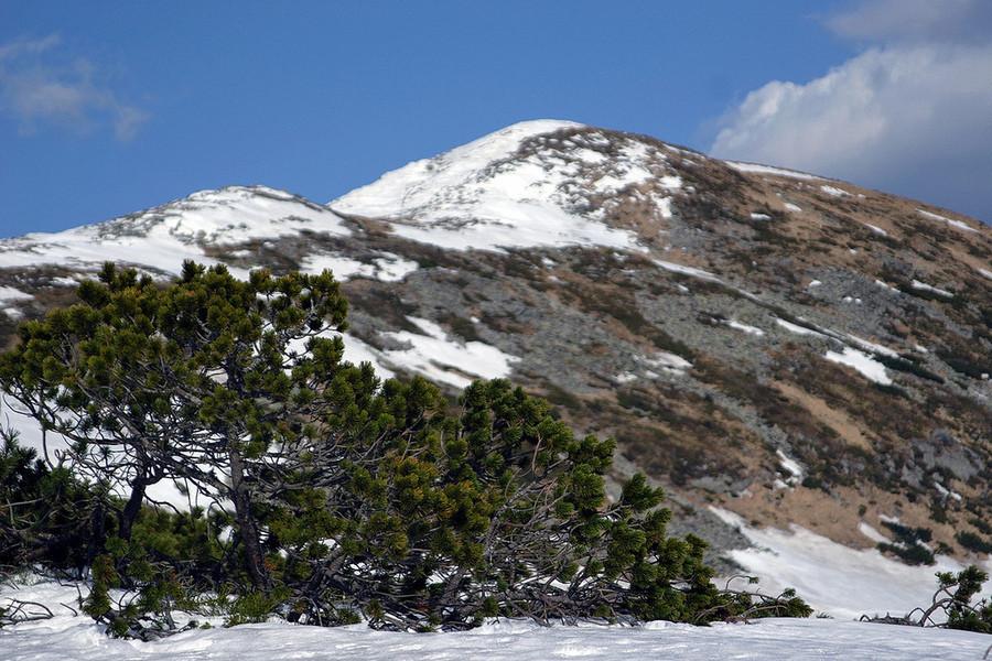 Красота Карпатских гор