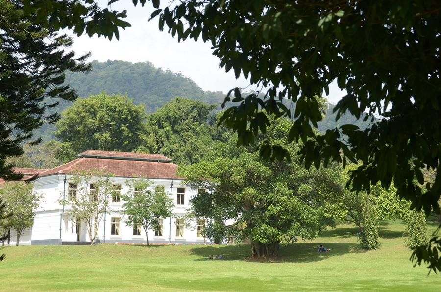 Королевский ботанический сад, Шри-Ланка