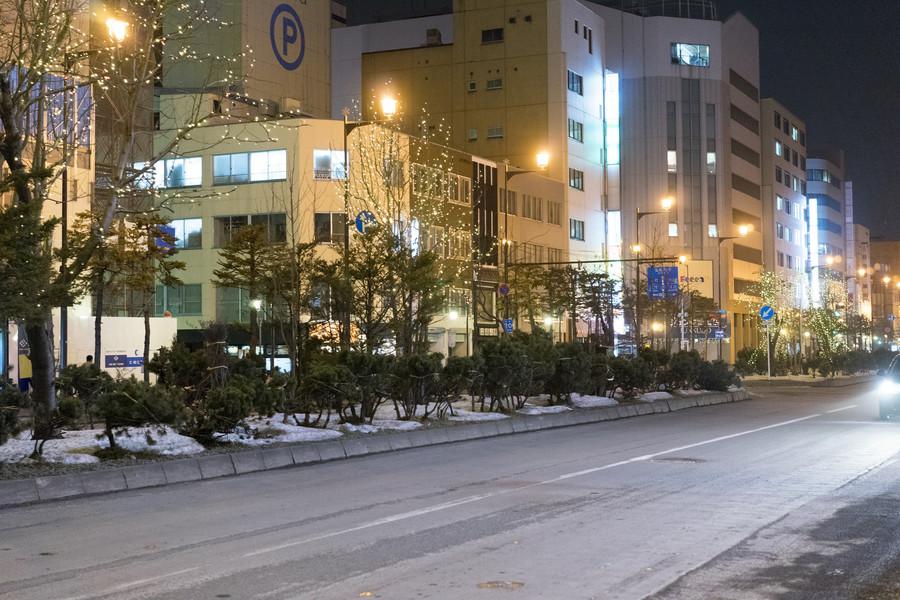 Маршрут по Японии. Асахикава