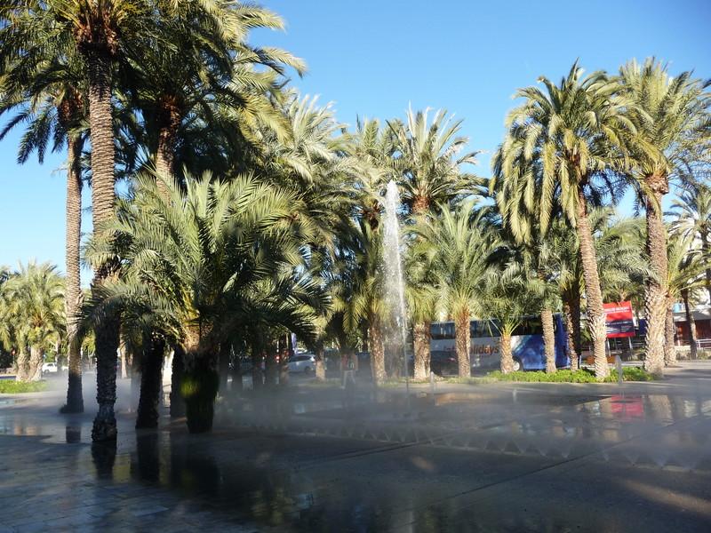 Зима в Испании. Эльче в декабре!