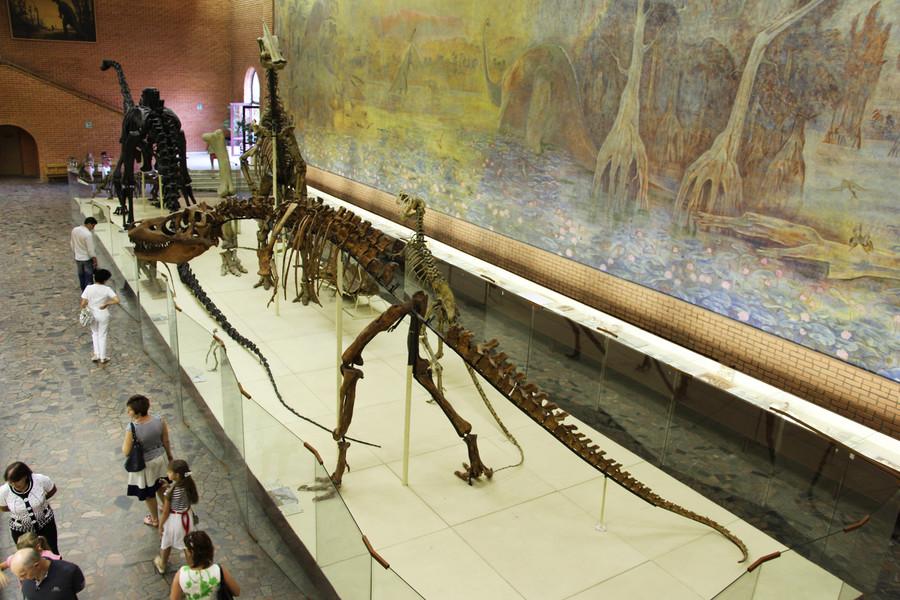 Палеонтологический музей имени Ю. А. Орлова