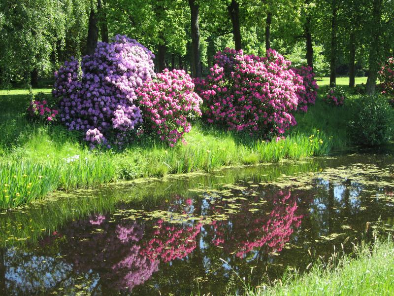 Старинный парк на севере Германии в городе Лютетсбурге