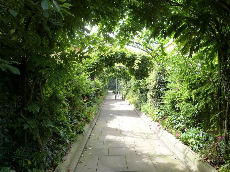 Прогулка по Королевскому Риджентс парк в Лондоне