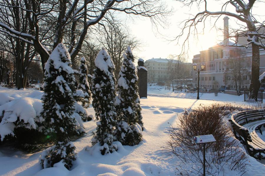 Зима в Риге. Январь 2016