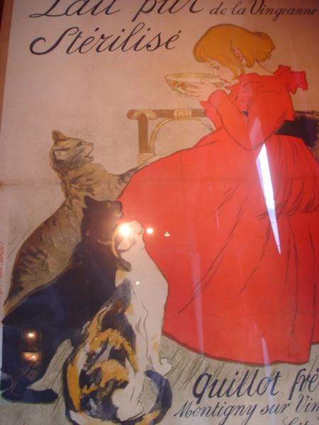 """""""Кабинет кошки"""". Мой любимый Амстердамский музей :)"""