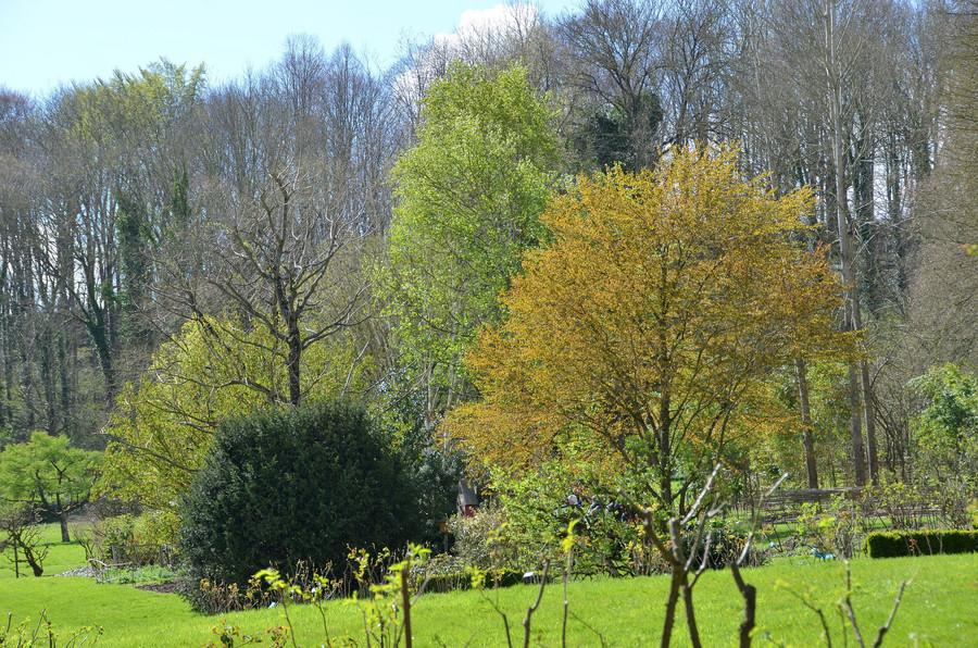 Разнообразие садов Валлуар