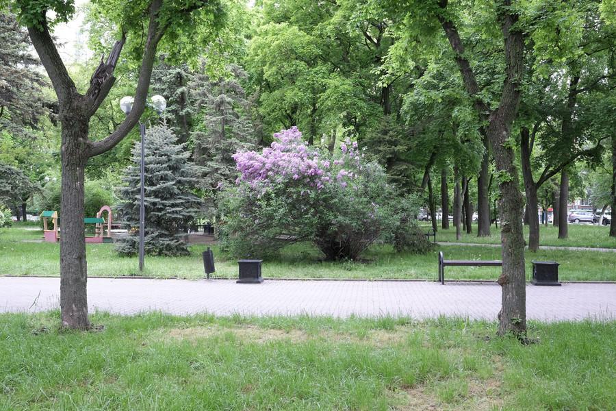 Майские праздники в Ростове-на-Дону
