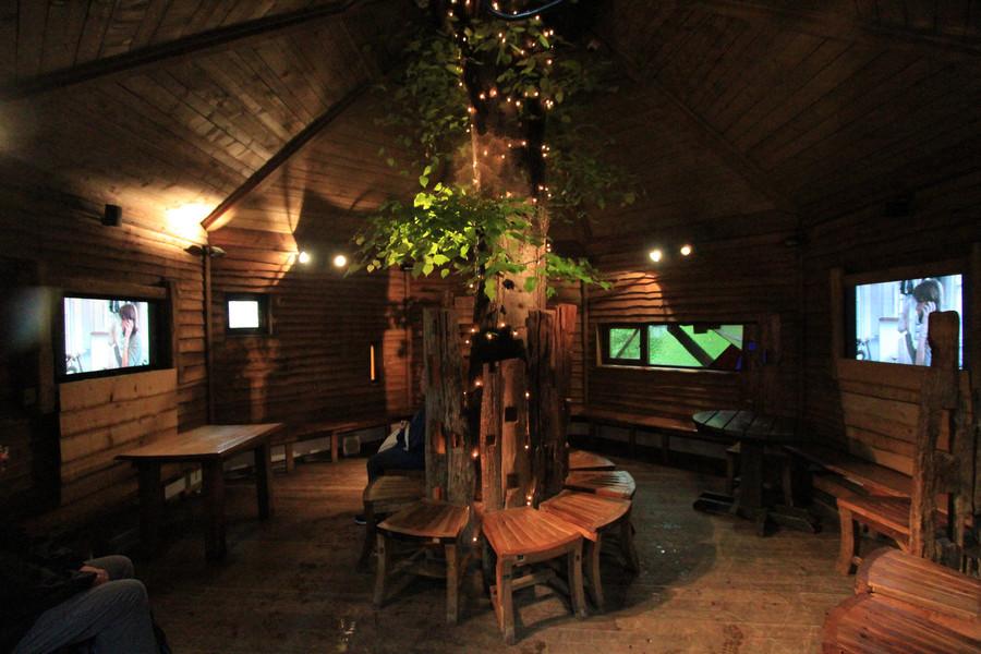 Дом на дереве в саду Алнвик