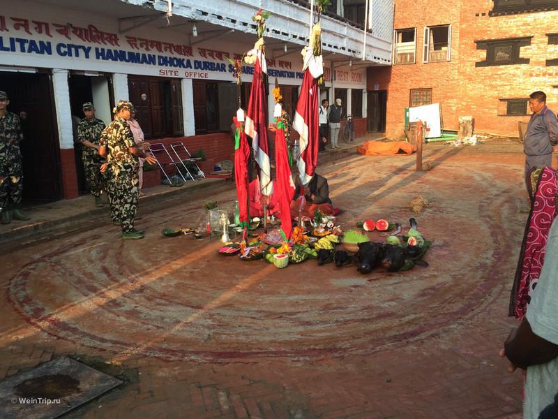 Первые дни в Катманду. Подготовка к самостоятельному треккингу в Непале.