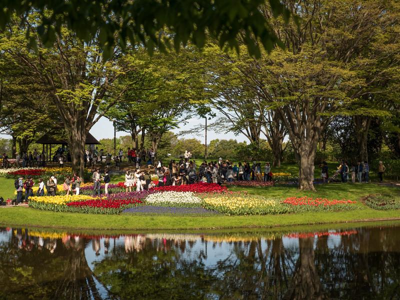 Парк Сёва в городе Татикава