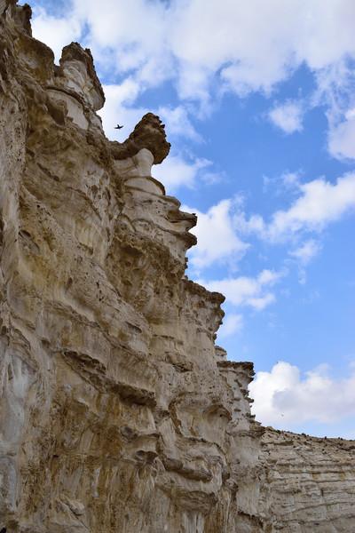 Прогулка по каньону Эйн-Авдат