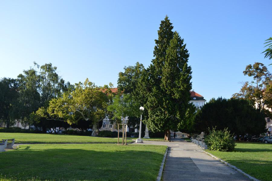 Марибор. Прогулки по городу и окрестностям