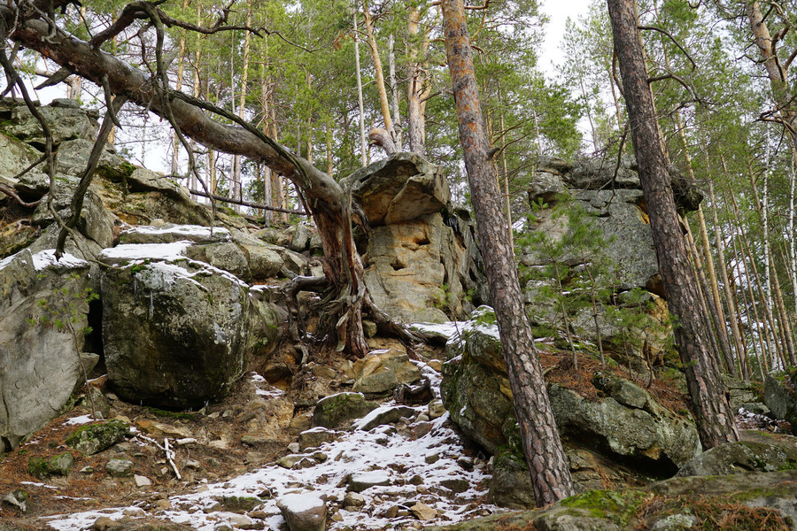 Поход в Рачейские Альпы