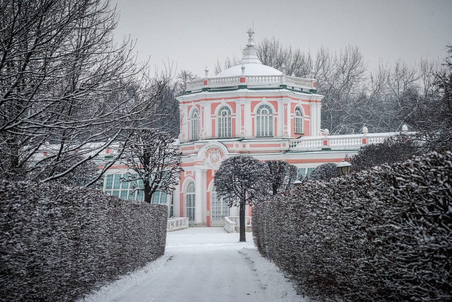 Зимнее Кусково