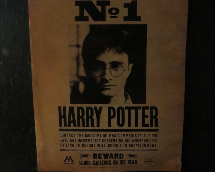 Гарри Поттер: Выставка в Мадриде