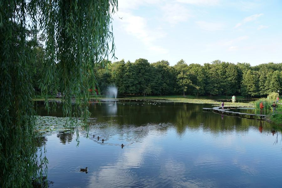 Зеленоградск. Городок на берегу Балтийского моря