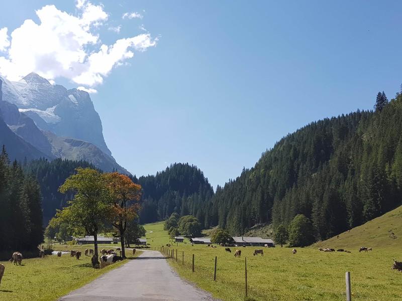 Долина и ледниковое ущелье Розенлау