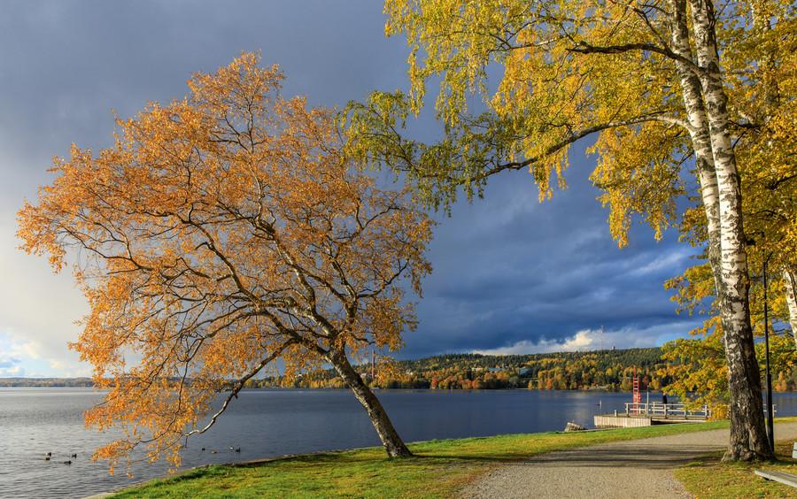 Осеннее Тампере